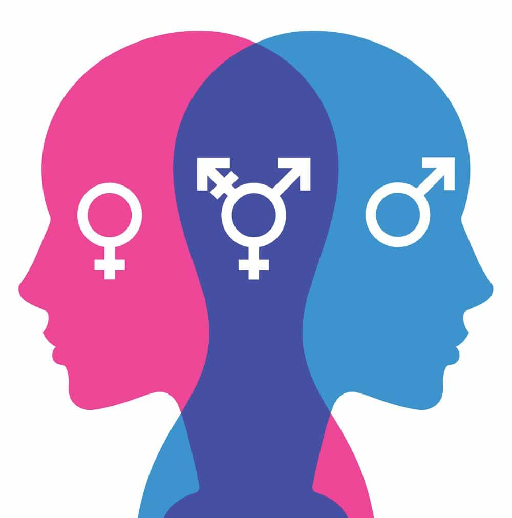 "Informe ""The Corrosive Impact of Transgender Ideology"""