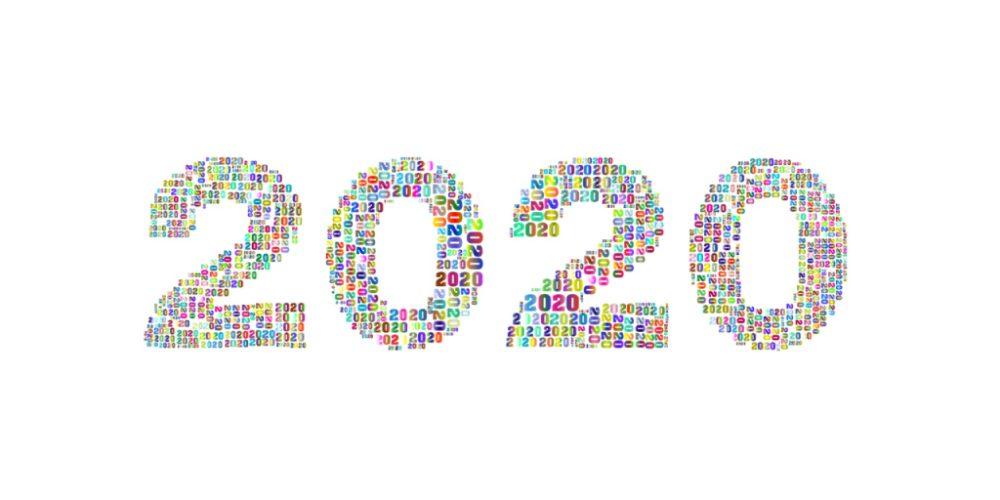 En 2020 no hubo solo pandemia