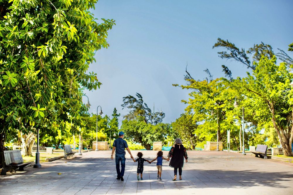 a-family-walking-in-the-park-3042436